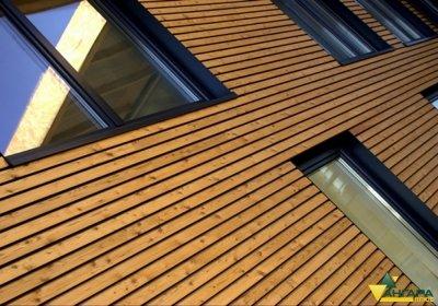 стены облицованные планкеном из лиственницы