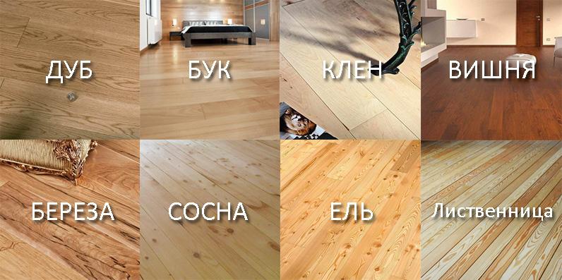 породы древесины половой доски